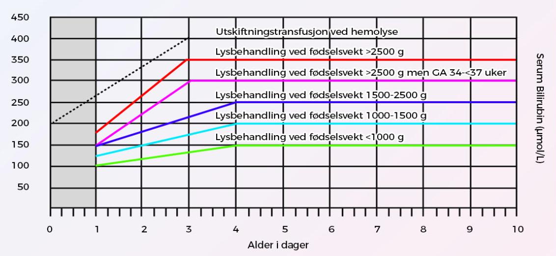 diagram-Hyperbilirubinemi-cingulum