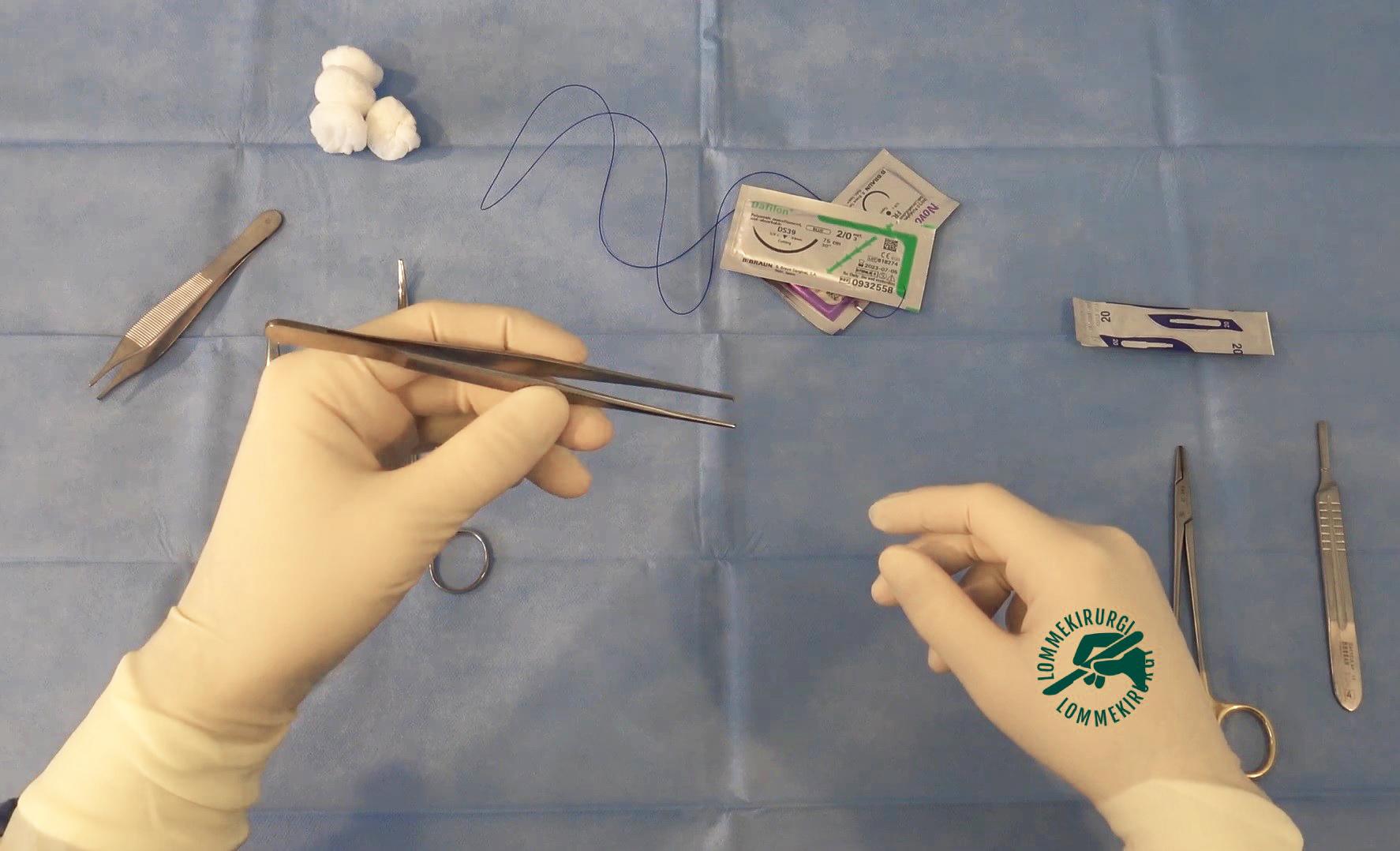 Pinsett til suturering og kirurgi - Cingulum
